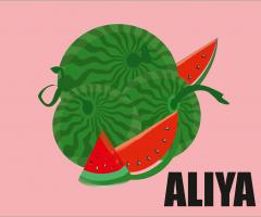 Aliya-HW-12